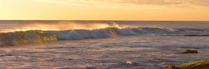 Backlit_Wave_Burns-Beach_Perth_WA_Colour