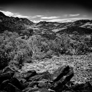 Dreamtime_Burrup-Peninsula_Dampier_Pilbara_WA_Black and White