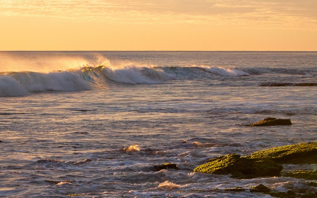 Late-Afternoon-Wave_Burns-Beach_Perth_WA_Colour