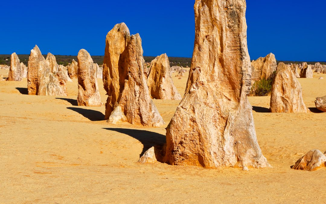 Leader-Of-The-Pack_Pinnacles_Cervantes_Central-West_Perth_WA_Colour