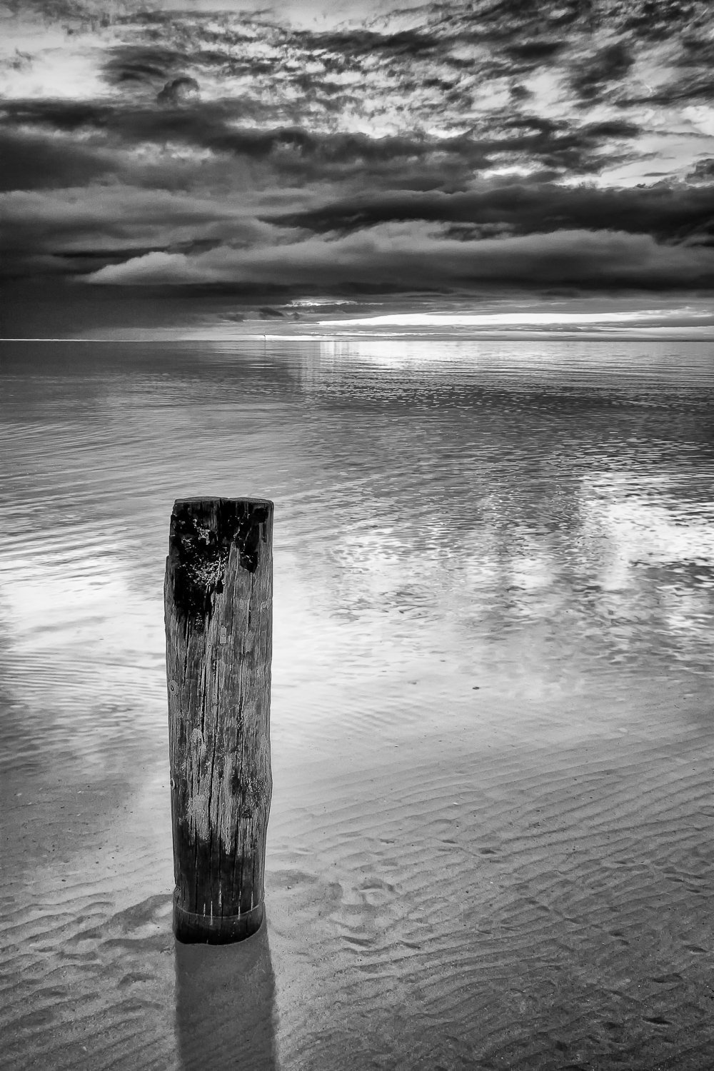 Mooring-Stump_Quindalup_Dunsborough_South-West_WA_Black and White