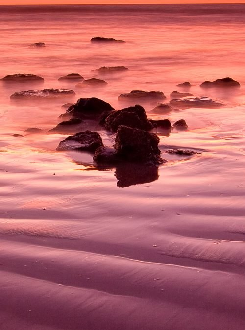 Purple-Frosting_Cable-Beach_Broome_Kimberleys_North-West_WA_Colour