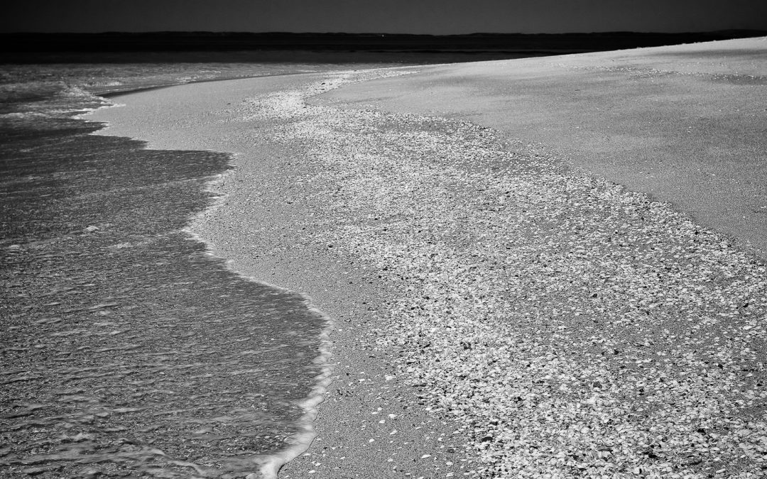 Shoreline_Rosemary-Island_Dampier-Archipelago_Dampier_Pilbara_North-West_WA_Black and White
