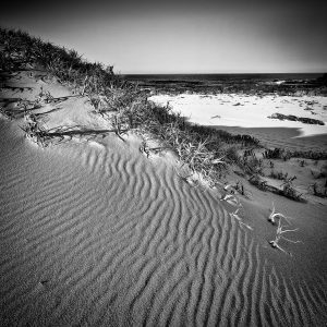 Windswept-Shadows_Windmills-Break_Cape-Naturaliste_Dunsborough_South-West_WA_Black and White