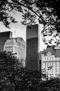 Old_and_New_Central_Park_Manhattan_New_York_USA_Black and White