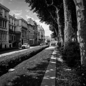 Tree_Lined_Carcassonne_Languedoc_Occitanie_South_France_Black_and_White