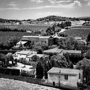 Vineyard_View_Carcassonne_Languedoc_Occitanie_South_France_Black_and_White